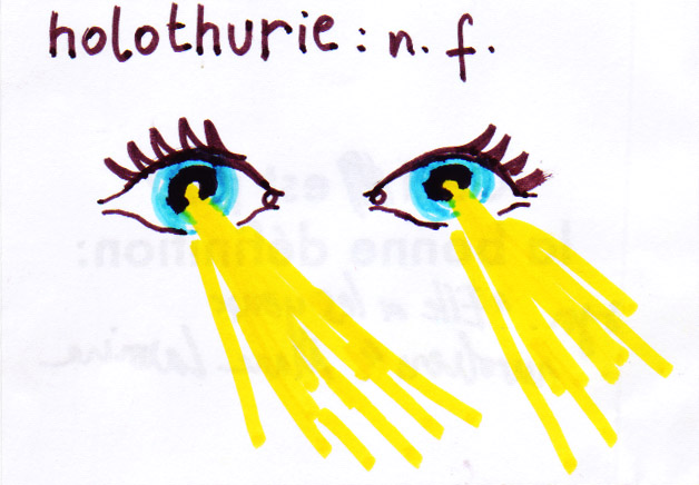 Holothurie 1